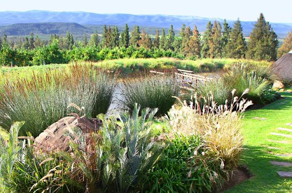 View of the beautiful garden at Addo Dung Beetle Guest Farm.