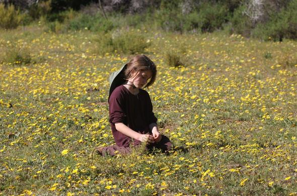 Child in a field of flowers at African Game Lodge.