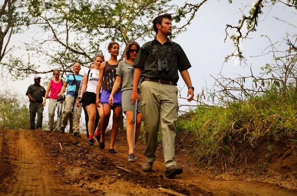 Walking safari at Amakhosi Safari Lodge.