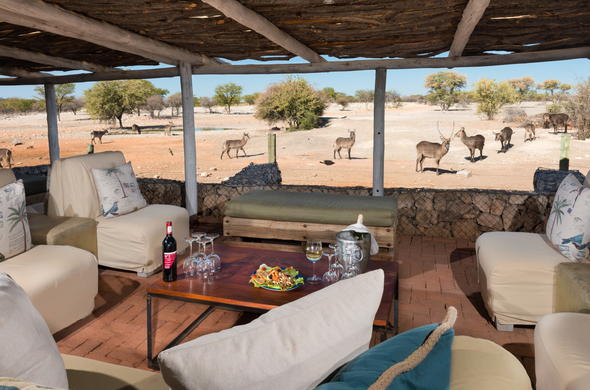 Enjoy a glass of wine with great game views from Anderssons Camp lounge.