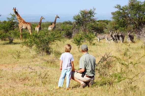 Ants Nest offers superb wildlife safaris in the Waterberg Reserve.