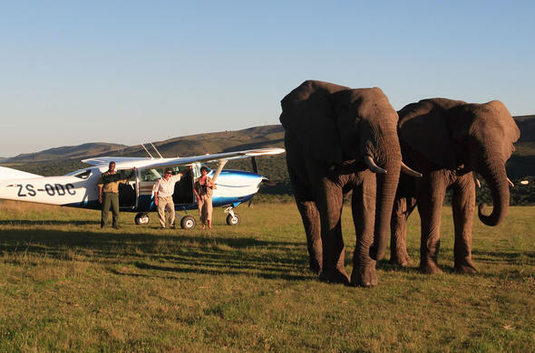 Arriving at Addo Elephant Safari Lodge