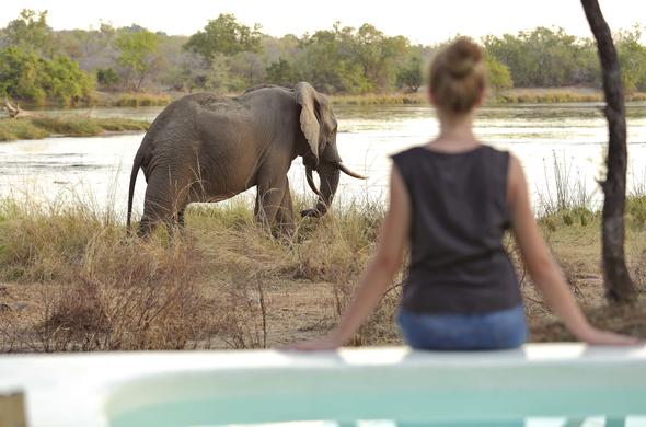 Guest enjoying an elephant sighting at the lodge.