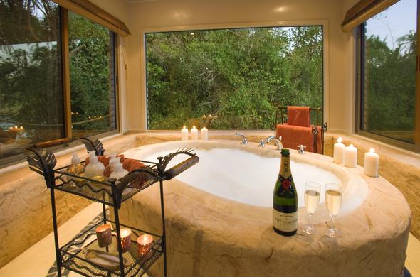 Luxury bathroom with a view of the bush.