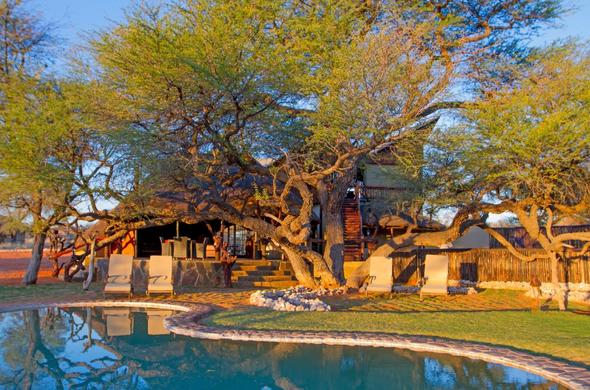 Exterior view of Camelthorn Kalahari Lodge with swimming pool.