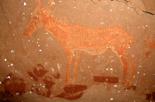 Huab valley rock art. Zebra