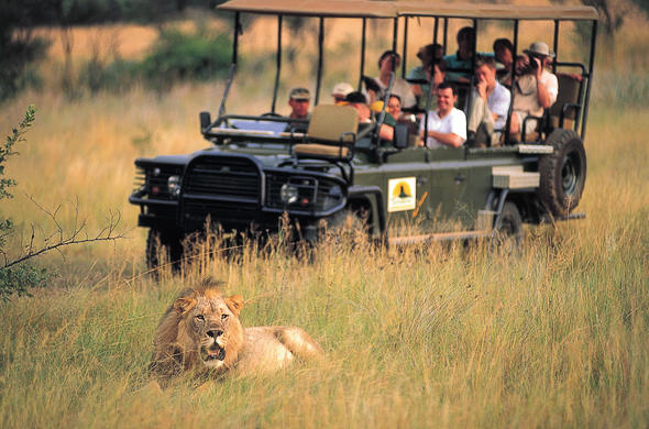 The conservancy offers great game viewing opportunities.