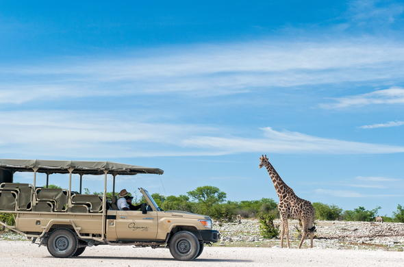 Game drive in Etosha National Park.