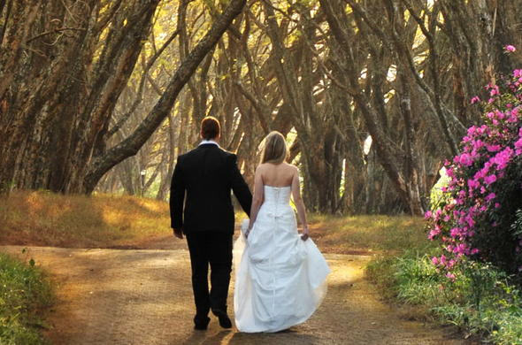 Highgrove House Hotel wedding couple walk down the tree-lined avenue.