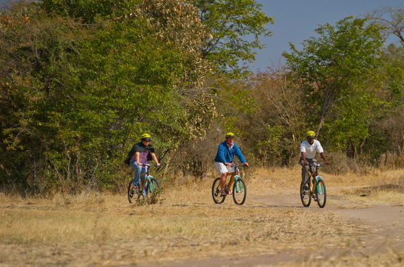 Enjoy a guided mountain bike tour.