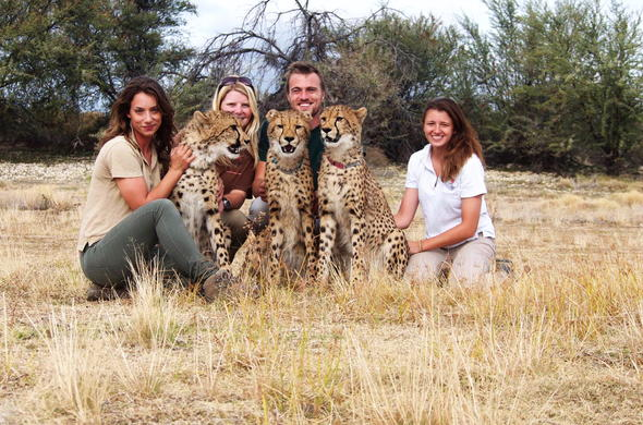 Wildlife encounters with cheetah in Inverdoorn Game Reserve in the Ceres Karoo.