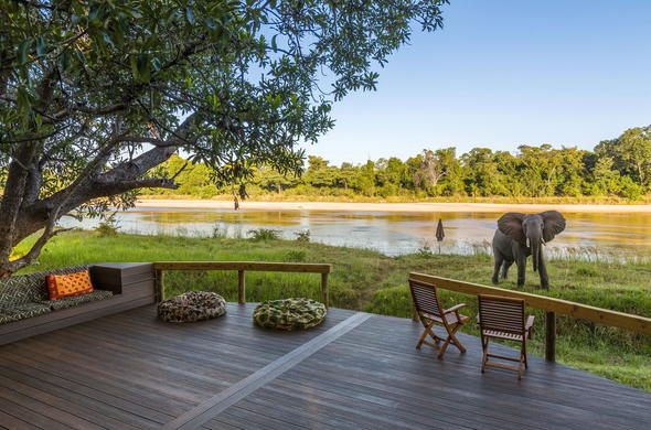 Elephant passing through the lodge.
