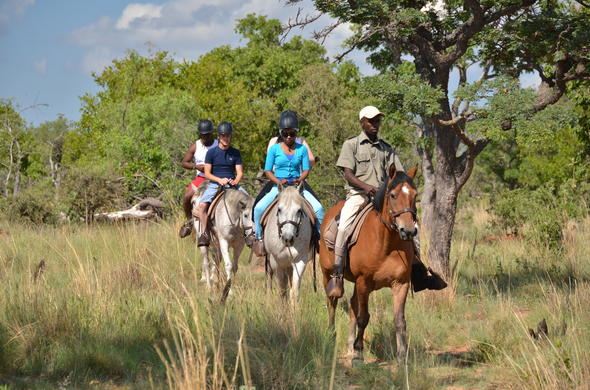 Horse riding safaris through Mabula Game Reserve.
