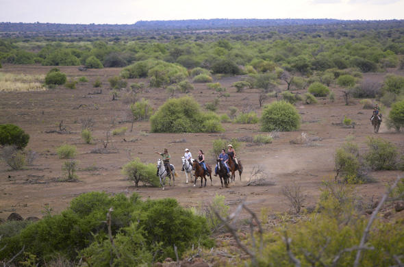 Horseback riding safaris in Limpopo