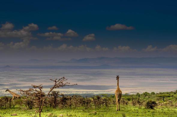 Tanzania Safari Destinations Ngorongoro Crater Safari