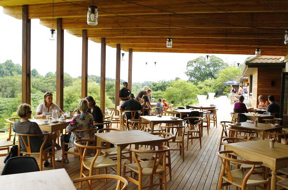Guests enjoying an alfresco meal at Makaranga Garden Lodge restaurant.