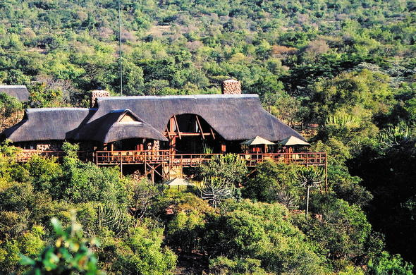 Makweti Safari Lodge is located in Welgevonden Private Game Reserve.