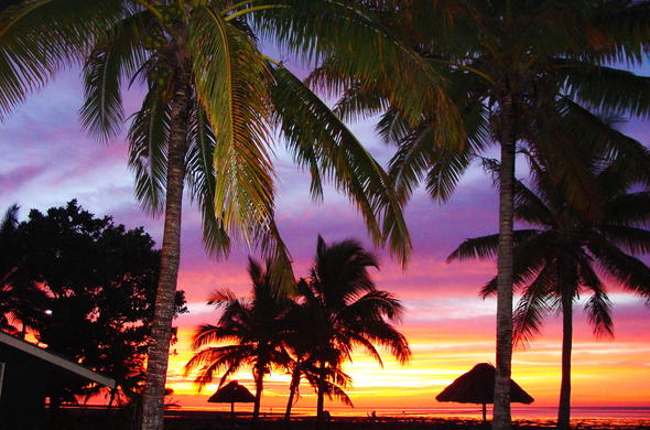 Sunset and palm trees in Vilanculos, Mozambique.