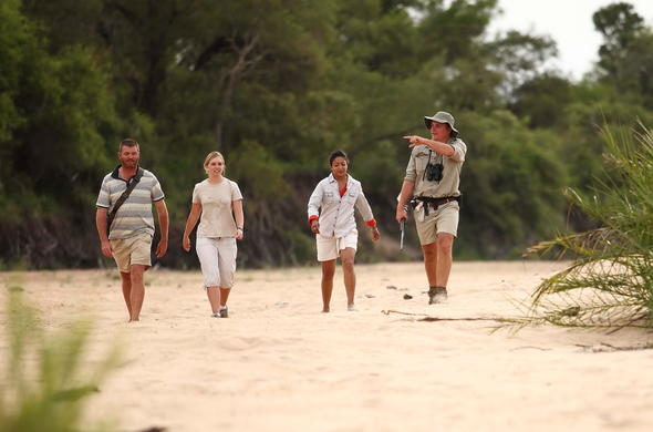 Guests on a guided walking safari.