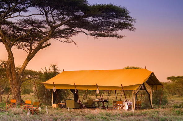 Enjoy sundowners and great company at Serengeti Under Canvas Camp.