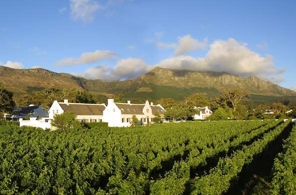 Steenberg Wine estate is located among gorgeous vineyards.