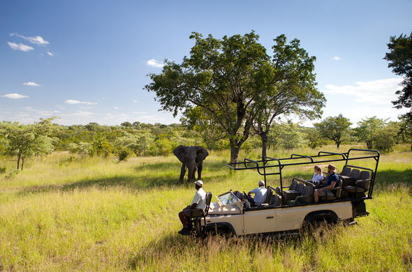 Encounters with elephant on game drives in Ulusaba Reserve..